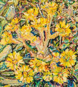Flores del Frailéjon #1