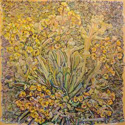 Frailéjon en flor #2
