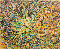 Frailéjon en flor #3