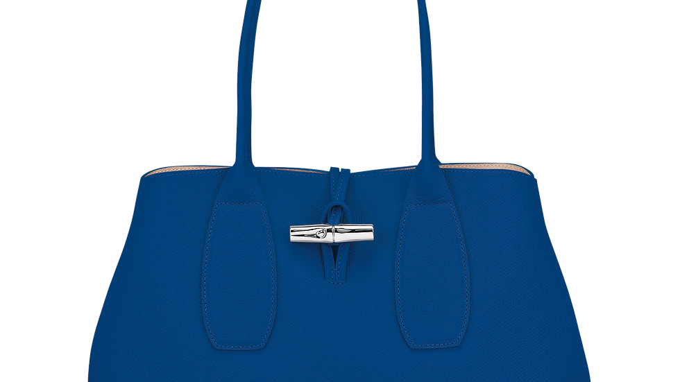 Longchamp 10060HPN