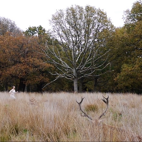 Image: Florence Peake. Still from fim 'Skymning' by Rosalie Wahlfrid 2015.
