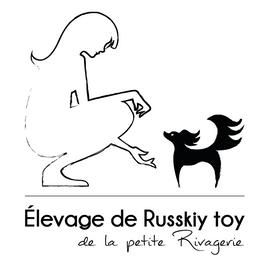 élevage de Russkiy Toy de la petite Rivagerie