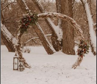 Round Arch With Pampass Grass