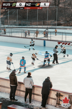 1. Example - Hockey (kids play).png