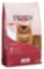 Royal Premium Cat Castrados - Copia.png
