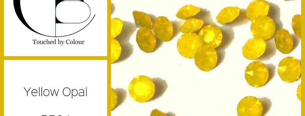 Yellow Opal - Chaton