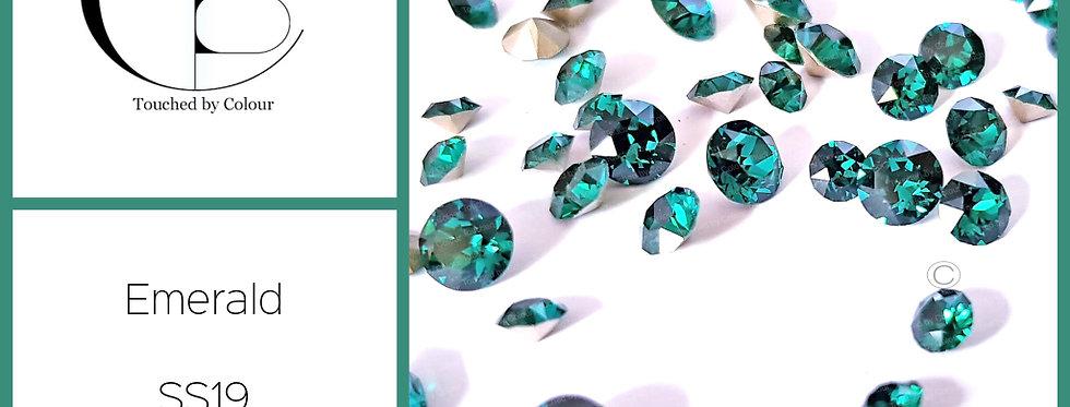 Emerald - Chaton