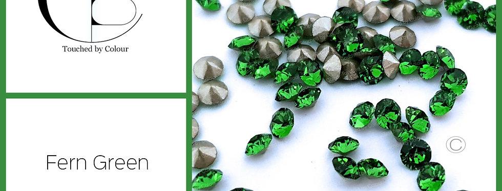 Fern Green - Chaton