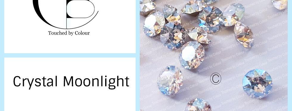 Moonlight - Chaton