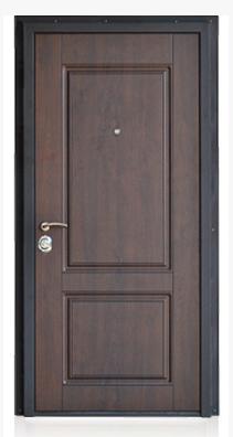 Modern Front Entrance Door