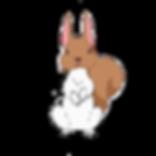 squabbit.png