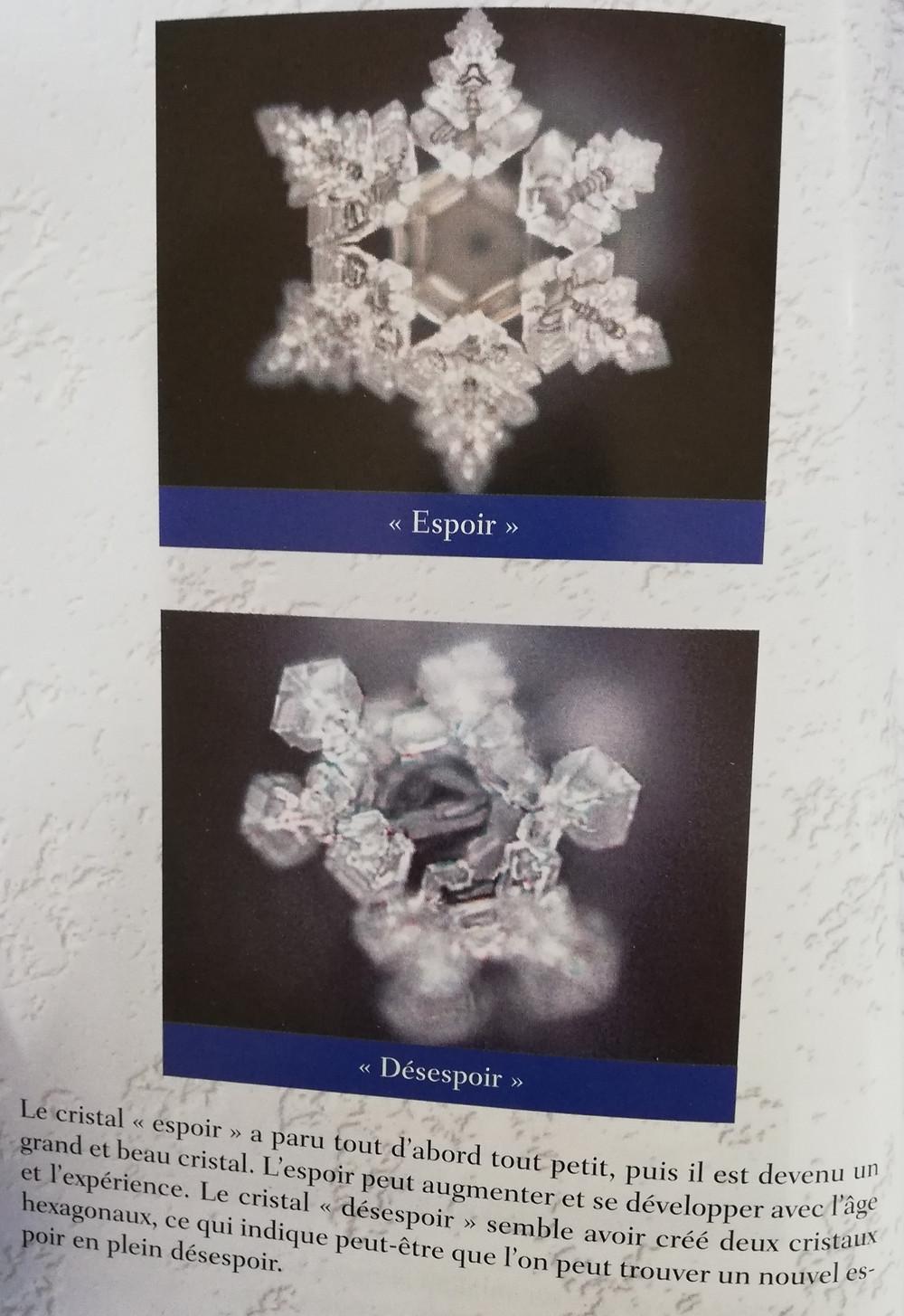Photo 2 : cristaux espoir et désespoir