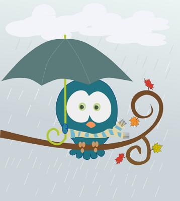 raincivetta.png