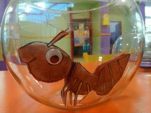 Ο Φίλιππος, το μυρμήγκι και ... η Παγκόσμια Ημέρα Ζώων!!!