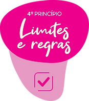 limites e regras.png