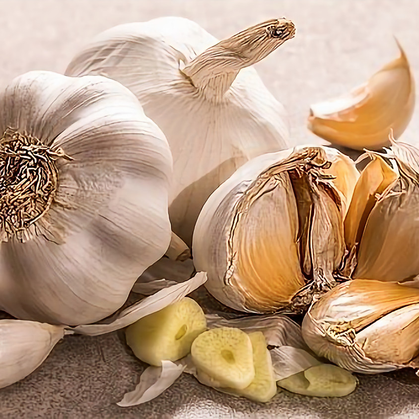Garlic Festival, Bethlehem, CT