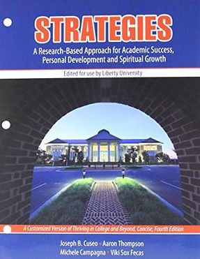 strategies book cover.jpg