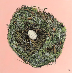 Nest Pink 2