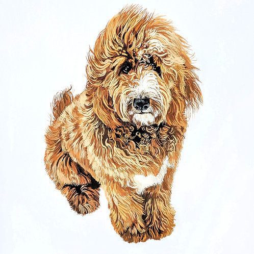 Windswept Goldendoodle
