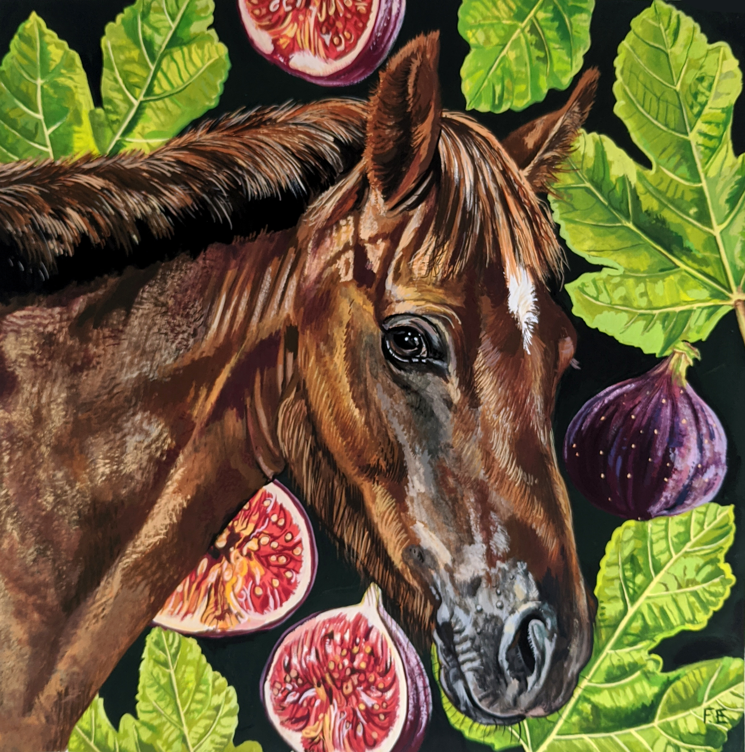 Horse and figs