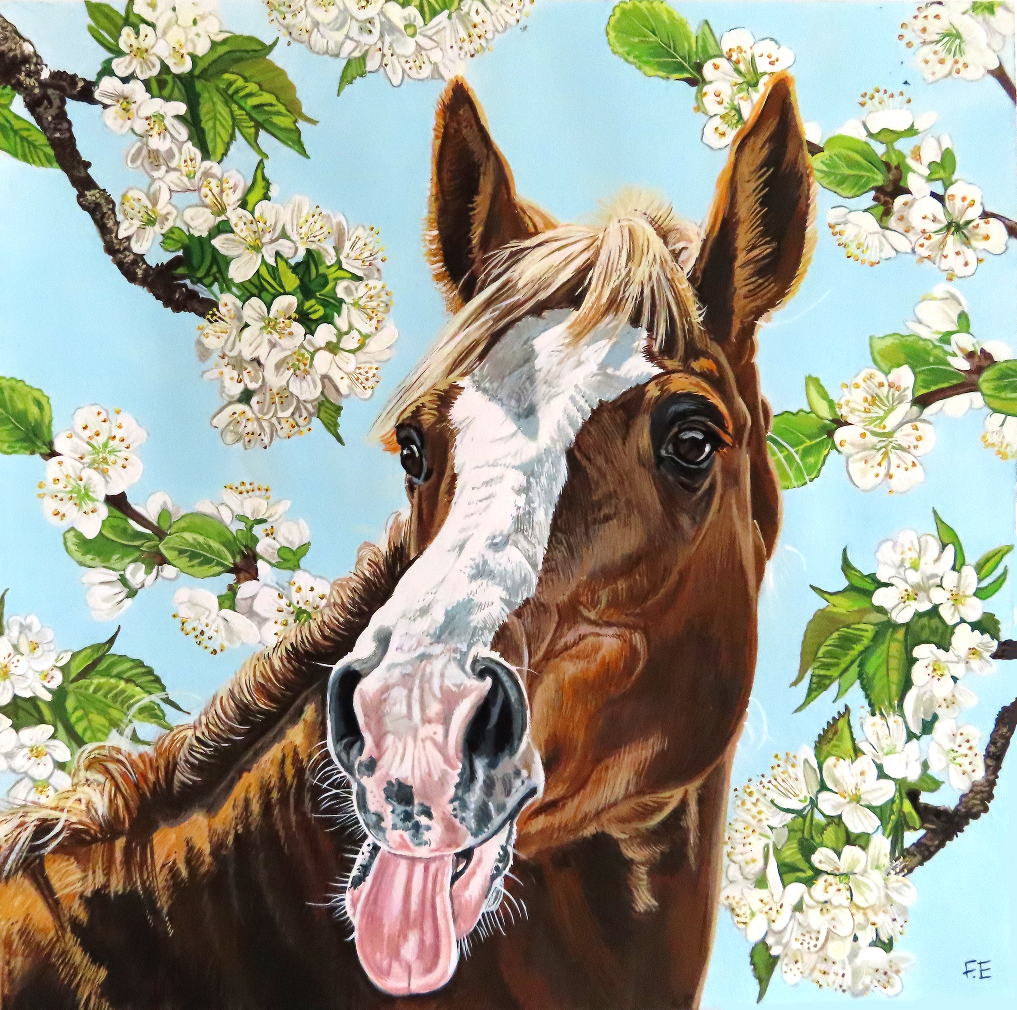 horse new