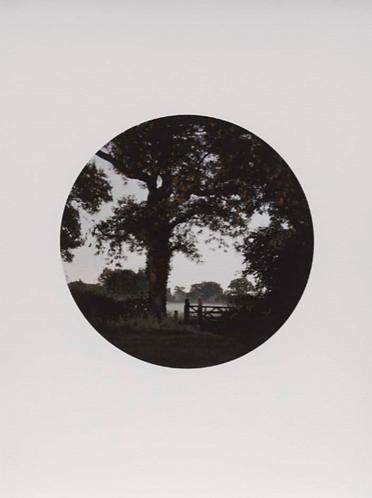 Darren Almond 'Fullmoon@Sandwalk Wood'