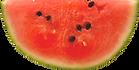 Plak van de watermeloen