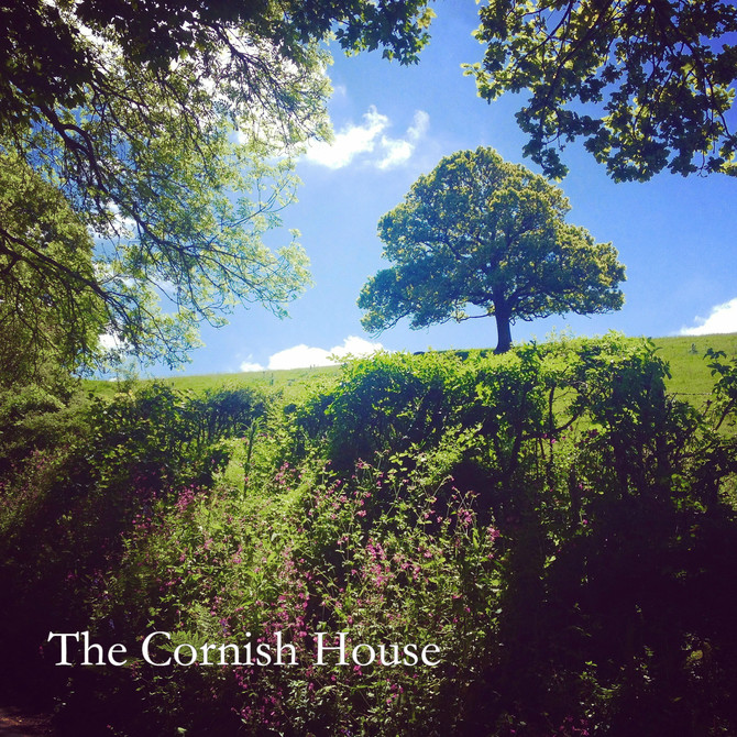 Relocating to Cornwall - Part 3.       Finding 'The One'