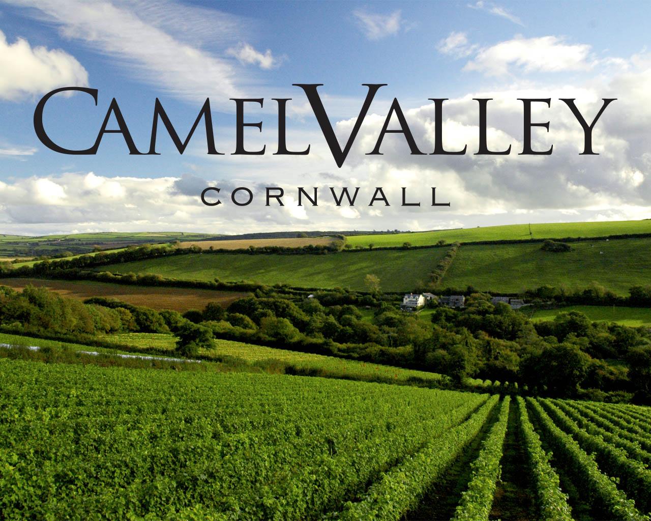 Camel Valley Vine Yard