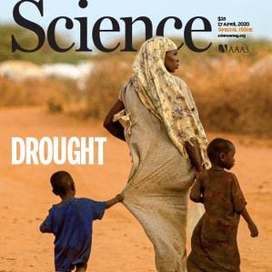 La sécheresse et ses conséquences