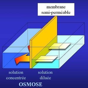 Déminéralisation par osmose inverse