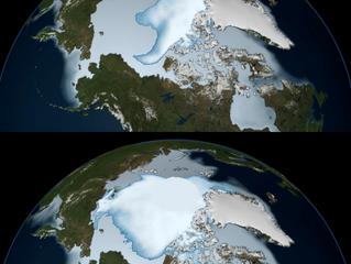 Réchauffement climatique (2/3) - conséquences