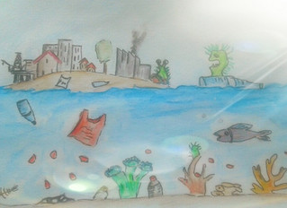 Déchets plastiques et maladies des coraux