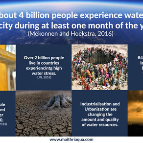 Global Water Stress: Is our well running dry?