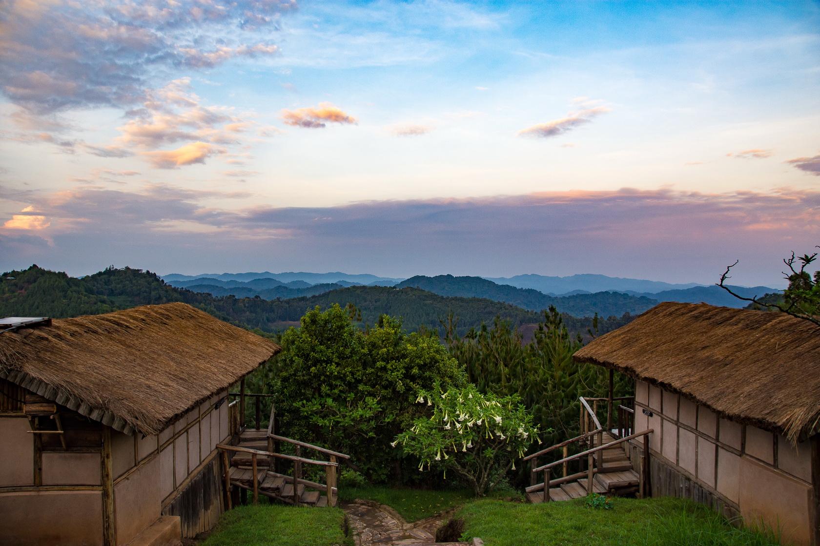 Gorillas Mist Camp Uganda Bwindi 2