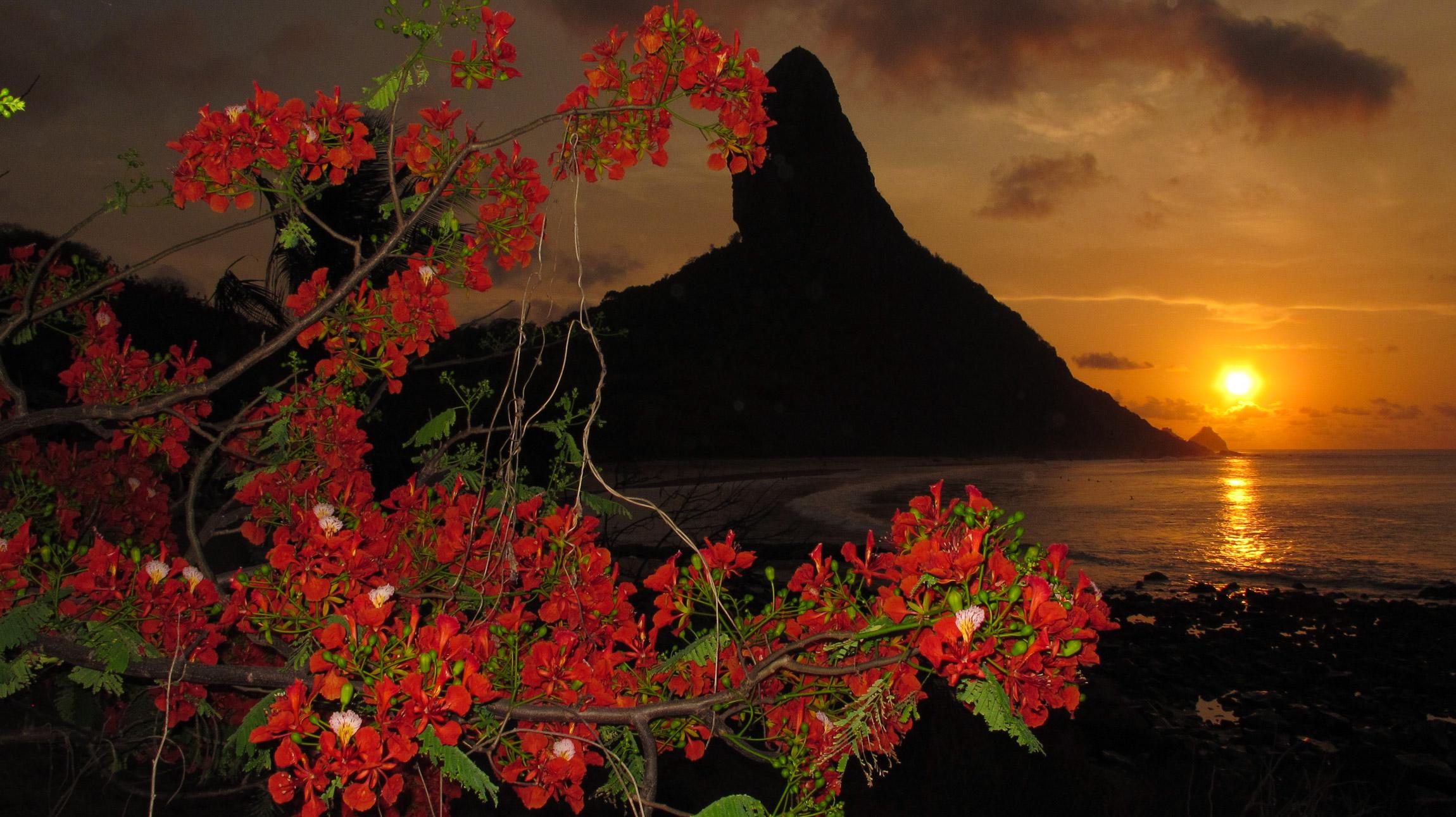 Pôr-do-sol sunset