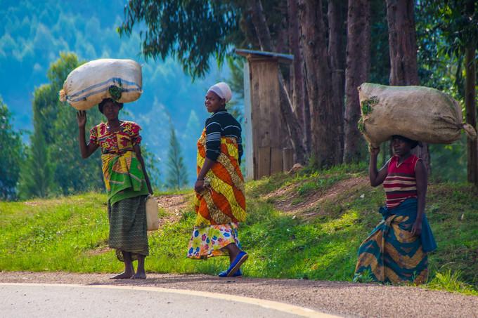 Descubra a África - Ruanda e Uganda