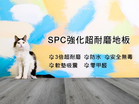 【寵物友善地板👉SPC強化超耐磨地板🥇】
