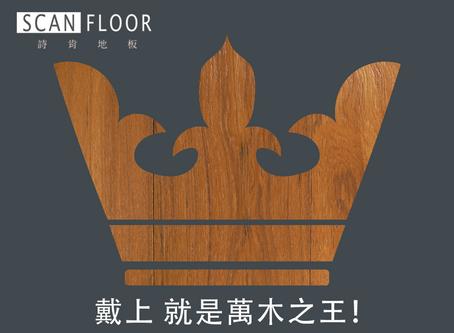 【詩肯地板 地板小教室:緬甸柚木的華貴祕密🥇】