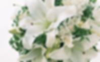www.easyvn.net--40-nice-white-flowers-wallpapers--037.jpg