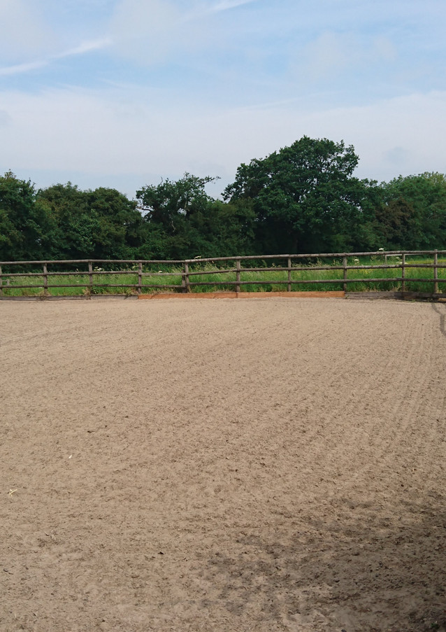 Lunge Arena