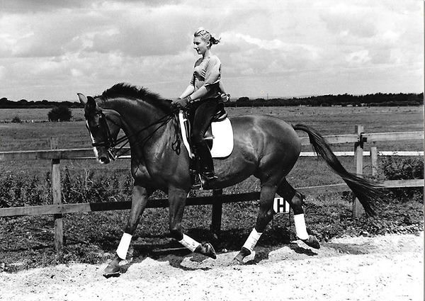 Alice Peternell riding dressage horse