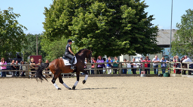 Alice demonstrating a clinic