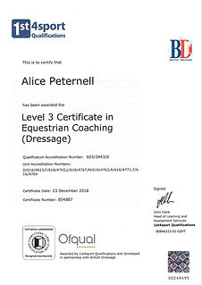 British Dressage Coaching Certificate