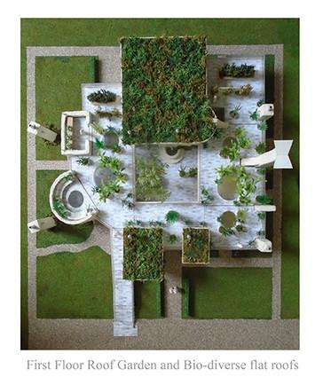 first floor roof garden and bio-diverse