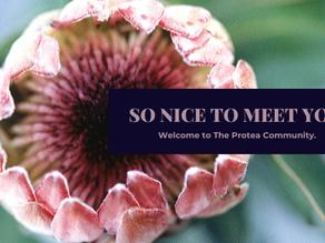 So Nice to Meet You!