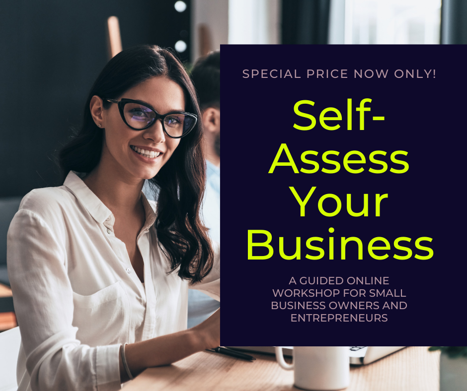 Assess Your Business: A Guided Learning