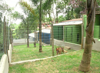 Dormitórios com jardim privativo