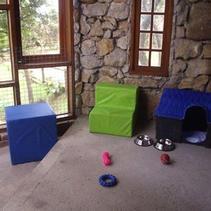 Dormitório para filhotes e cuidados especiais
