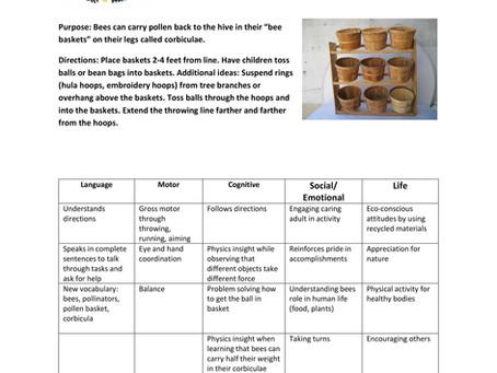Activity Guide: Pollen Basket Toss